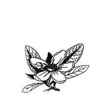 Foliage 3 Rubber Stamp