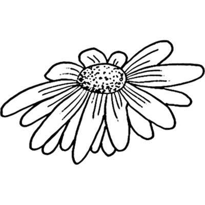 You can order this Mini Daisy Head
