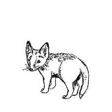 Fox Cub Rubber Stamp