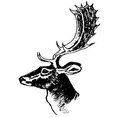 You can order this Stag Head