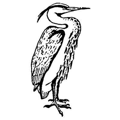 You can order this Heron