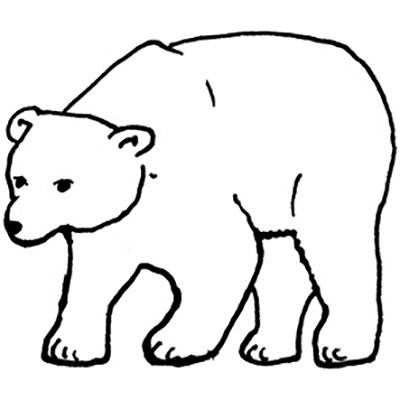 You can order this Polar Bear