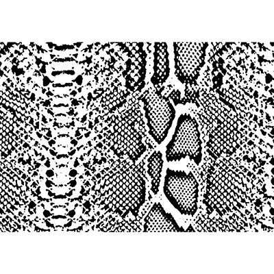 You can order this Snake Skin Print