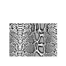 Order Rubber Stamp snake skin fur Tropical animal reptile