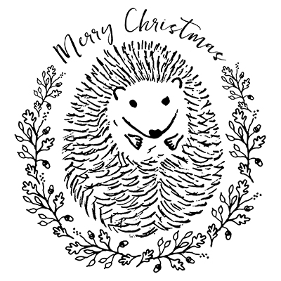 You can order this Christmas Hedgehog