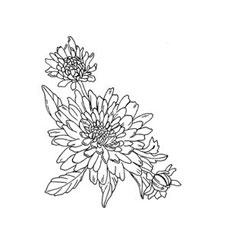 Dahlia Blooms Rubber Stamp