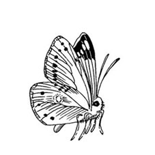 Butterfly Side View Rubber Stamp