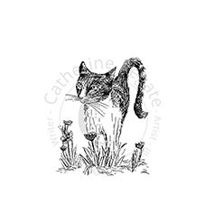 Garden Cat Personalised Stamp