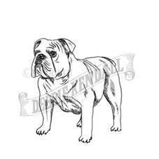 Bulldog Rubber Stamp