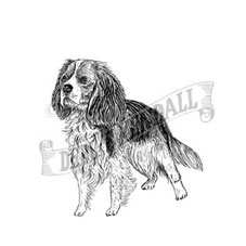 Cavalier King Charles Rubber Stamp