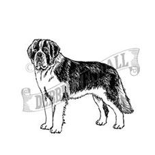 Saint Bernard Rubber Stamp