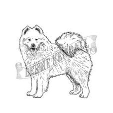 Samoyed Rubber Stamp
