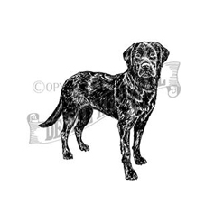 Black Labrador Rubber Stamp