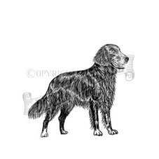 Flat Coat Retriever Personalised Stamp