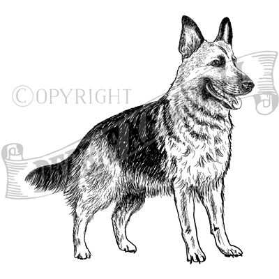 You can order this German Shepherd