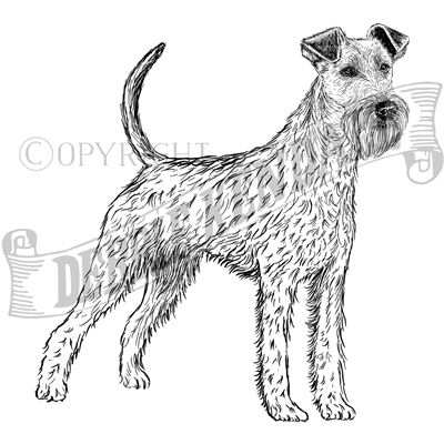 You can order this Irish Terrier