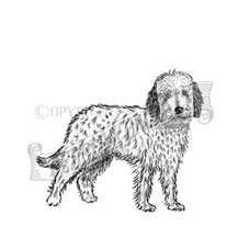 Labradoodle Personalised Rubber Stamp