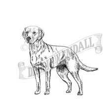 Labrador Rubber Stamp