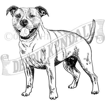 You can order this Staffordshire Bull Terrier
