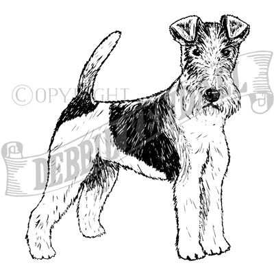 You can order this Wire Fox Terrier