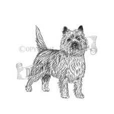 Cairn Terrier Rubber Stamp