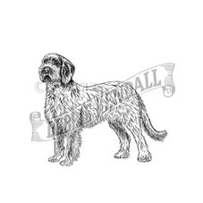 Spinone Italiano Rubber Stamp