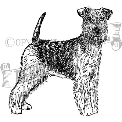 You can order this Welsh Terrier