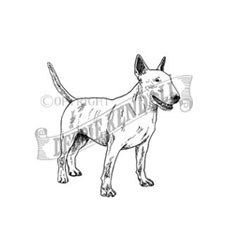 Bull Terrier Personalised Stamp