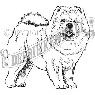 You can order this Chow Chow