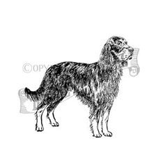 Gordon Setter Craft Stamp