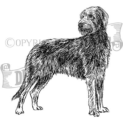 You can order this Irish Wolfhound