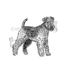 Lakeland Terrier Rubber Stamp