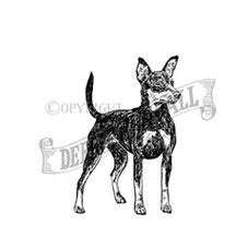 Miniature Pinscher Personalised Stamp